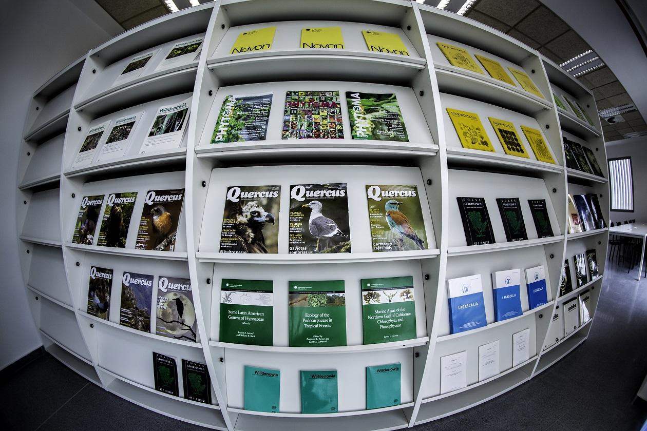 Proyectos de oficina en Sevilla: Instalación de bibliotecas