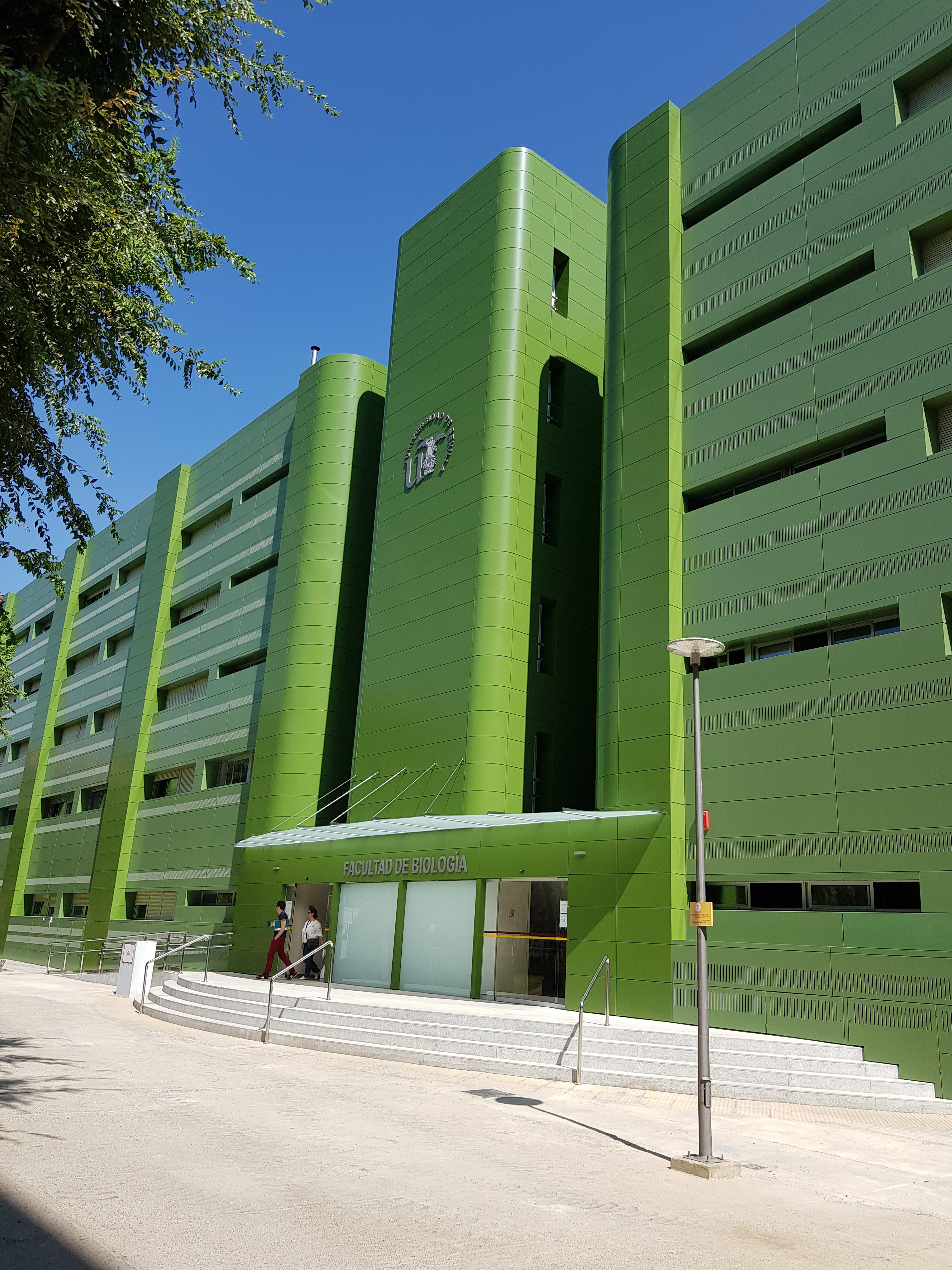 proyectos de oficinas sevilla: proyecto arquitectura fachada
